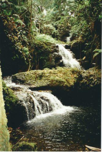 rarotonga_river_falls